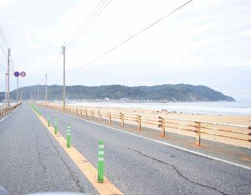 【福岡・志賀島】豪華すぎるサザエ丼と絶景、珍しい金印ドッグを巡るプラン!