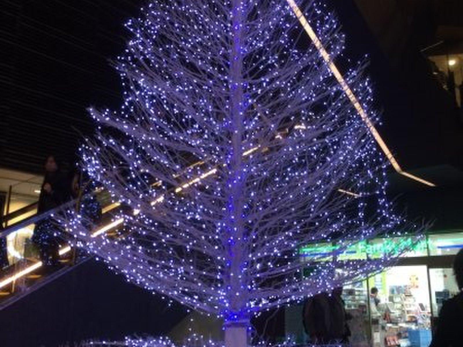 東京地下鉄株式会社 半蔵門線押上駅