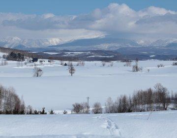 【冬の北海道】歩いて美瑛の丘へ。一面の銀世界と静寂に包まれる散歩コース