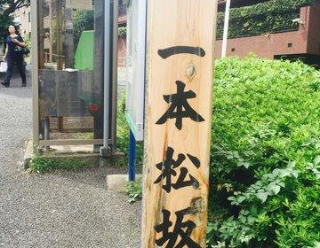 都心をお散歩!元麻布界隈は坂だらけ!?江戸時代に想いを馳せる大人のプチ冒険【坂めぐり】