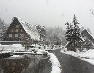 【弾丸日帰り!】飛騨高山~白川郷~金沢で日本を満喫しよう!
