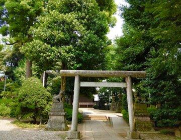 大人の東京散歩。中野区〜新大久保までお散歩。極上グルメをした後はがっつり歩いて健康的なウォーキング