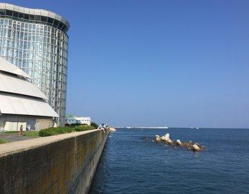 【境港完全観光マニュアル】これを読めば完璧!東京から行く山陰の港町。境港を1日楽しむ!