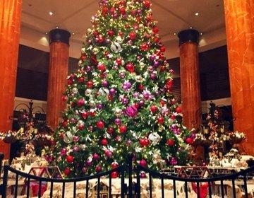 ウェスティン東京のバーでXmas女子会♪大きなクリスマスツリーにテンションが上がる夜☆