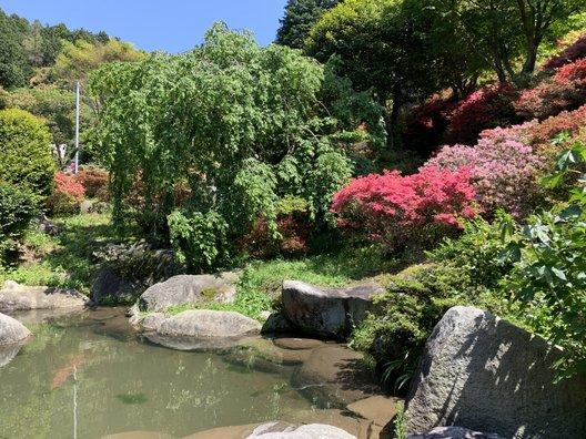 浮岳幸花樹園