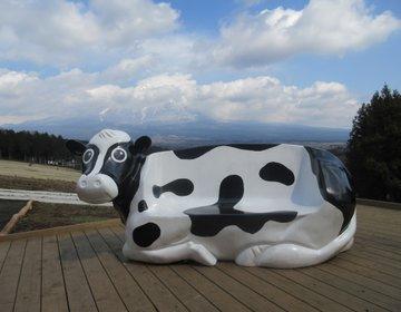 静岡へ日帰り旅行!さわやかのハンバーグを食べ、富士山麓のまかいの牧場で1日遊ぶプラン