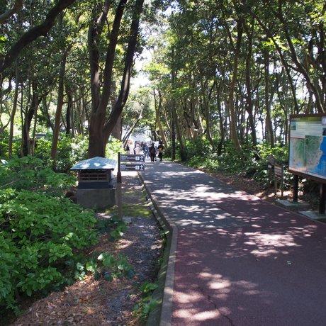 門脇埼灯台