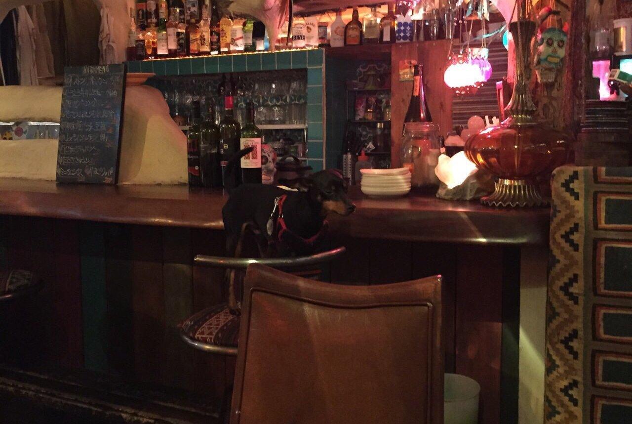 MOSS Dining Bar
