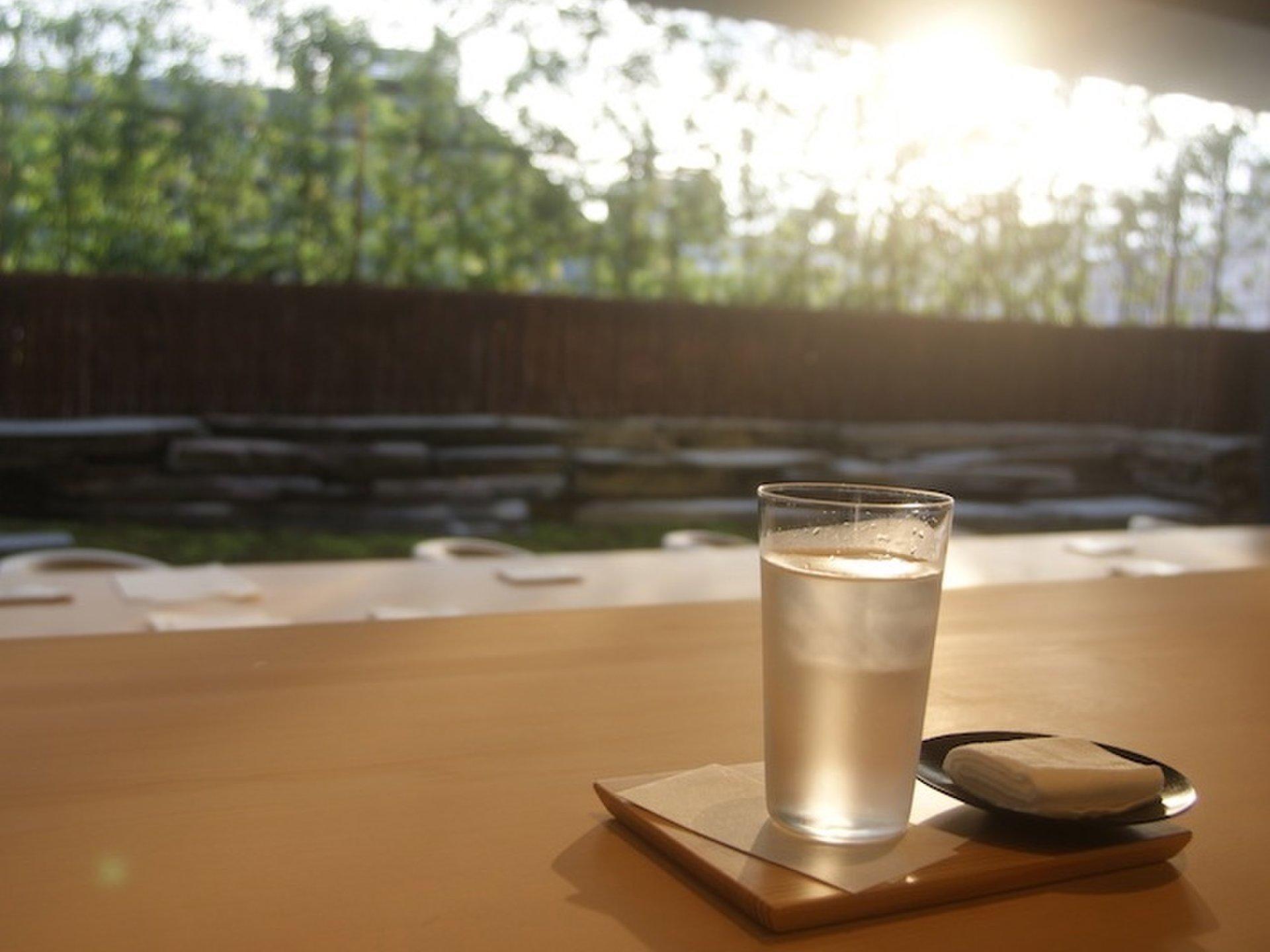 オシャレ女子必見!表参道の緑いっぱいの癒しのカフェで心身ともにリフレッシュ!