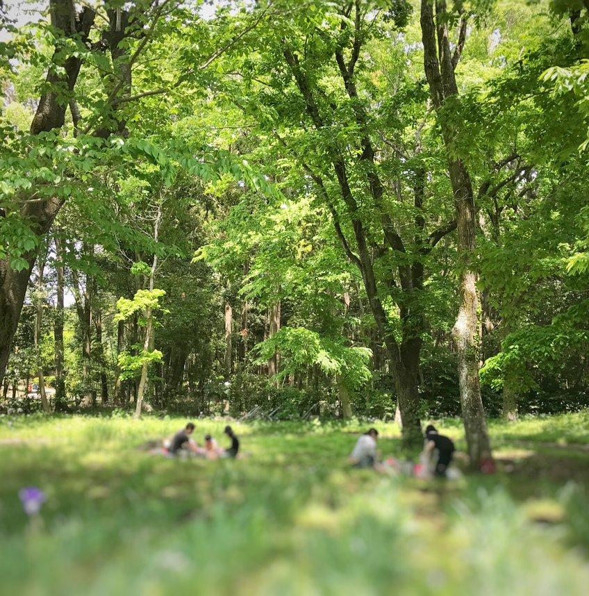 佐倉草ぶえの丘