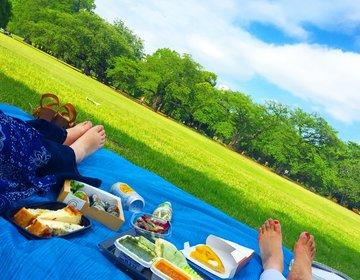 新宿の大自然で究極にだらけよう!伊勢丹の豪華弁当!【新宿御苑最強ピクニック】