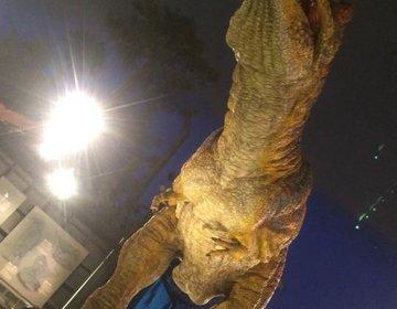 【福井県の人気観光スポット】平泉寺の千年の景色!白山恐竜パークで一億年前に存在した恐竜を見に行こう!