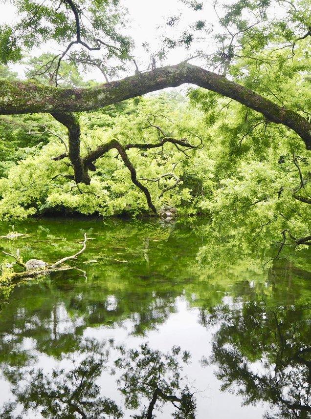 五色沼湖沼群