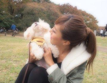 《愛犬とデート♡》ペットOKのカフェ巡り 代官山,渋谷,中目黒編