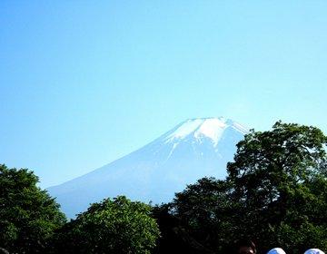 【富士山世界文化遺産構成資産】神秘の湧き水「忍野八海」を見て涼もう♪