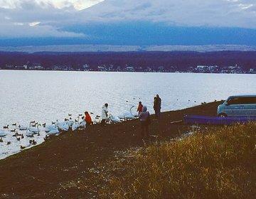 【2つの湖に行ける駅】富士山の麓富士山駅へいったら絶対行きたい!夏は河口湖!冬は山中湖!