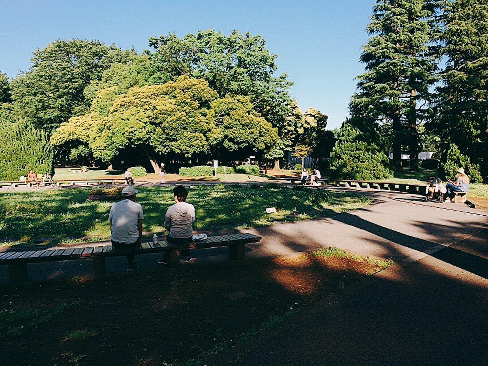 駒沢オリンピック公園 中央広場