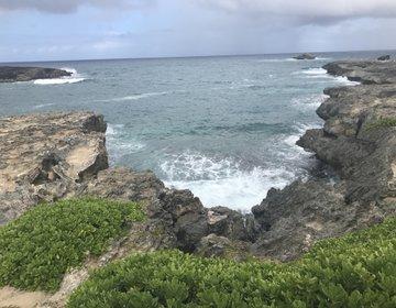 ハワイ旅行。ハワイ生まれロコが案内するパワースポット巡り!ノースショア&モアナルアガーデン