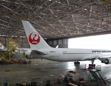 【大人も子供も大興奮!】GWぴったり!新しくなった羽田JAL(日本航空)工場見学プランへおでかけ