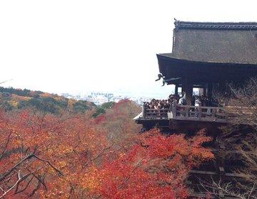 【京都・清水寺】清水寺と恋愛の神様で有名な地主神社へ♡♡