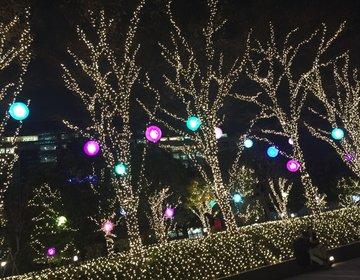 """【クリスマス女子会】スタバ新作・イルミネーション・""""女子同士でしかみれない""""絶景夜景!@新宿"""