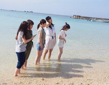 〜初めての方にオススメ!間違いなしの沖縄の定番観光スポット&グルメ旅〜