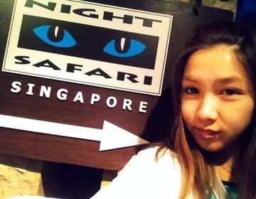【シンガポール】行かねば損◆ナイトサファリ◆に迫る!!大人も子供も楽しめるスリル満点な動物園!!