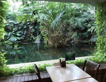 入場料250円でデートができる!新木場の土日の穴場スポット「夢の島・亜熱帯植物館」は面白い