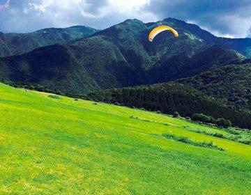 夏こそアクティブに☆【静岡県・朝霧高原でパラグライダー】地上400mを飛ぶ!