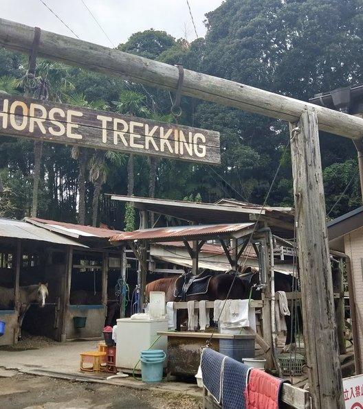 ホーストレッキングファーム・三浦海岸