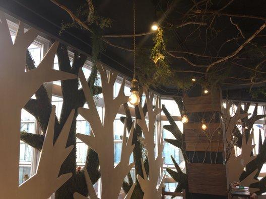 大須の森カフェ コダマ