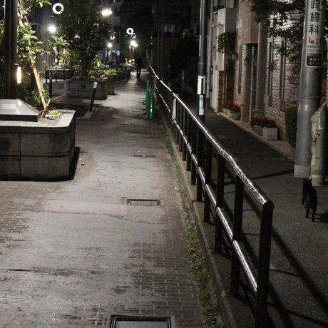 キャットストリート