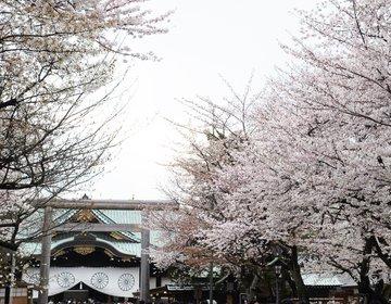 靖国神社で、お花見を楽しんで、遊就館をじっくり見学【標準木、スタンプ、さくらさくら、千鳥ヶ淵】