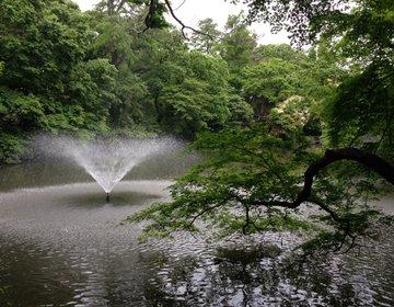 【住みたい街No.1の吉祥寺でデート!】のんびりできるハンモックカフェに井の頭公園!