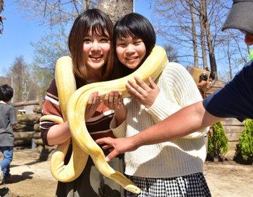 危険すぎる動物園「ノースサファリサッポロ」札幌観光におすすめ!