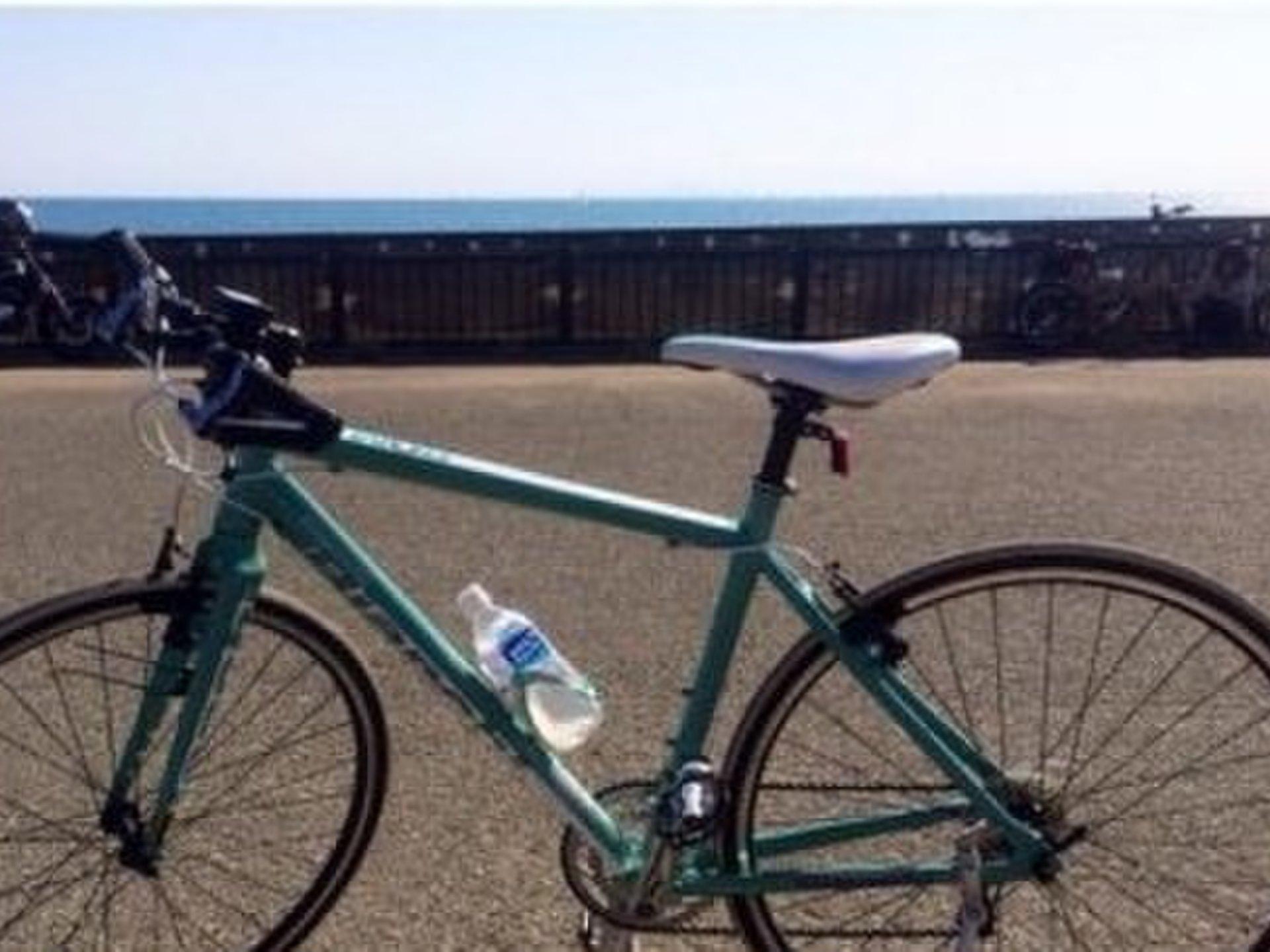 [스포츠 가을 도쿄 · 요코하마 공원에서 자전거 데이트] 인기 추천 명소 5 선! 단풍도 즐길 ♡