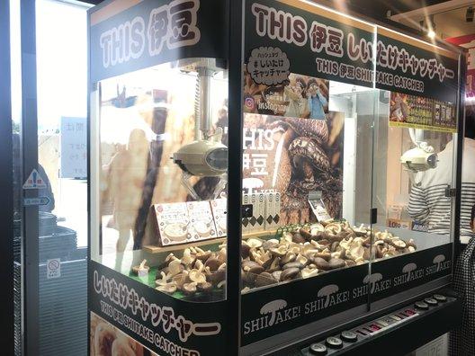 伊豆・村の駅 農産物直売所