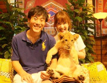 ライオンの赤ちゃん抱っこ♡?!富士山周辺1日観光デートコース♪
