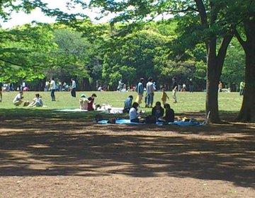 【代々木公園ピクニックデート】上級者が教えるのコスパ最高のデートコース
