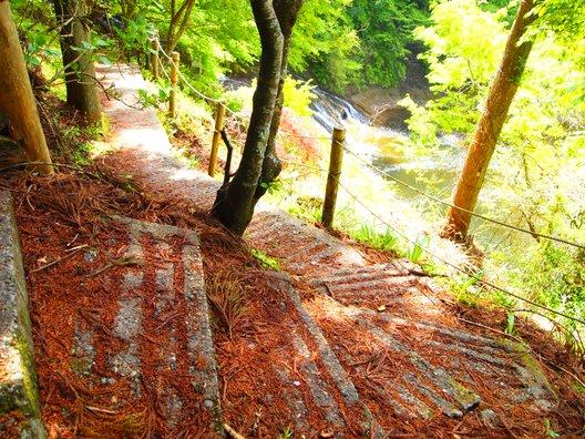 粟又の滝遊歩道