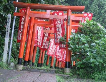 鶴岡八幡宮だけじゃない!鎌倉のオススメスポット〜幻想的な森の中の神社篇〜