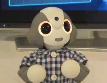 ロボットに触れながら最先端技術を学べる「TEPIA 先端技術館」は、超面白い穴場スポット
