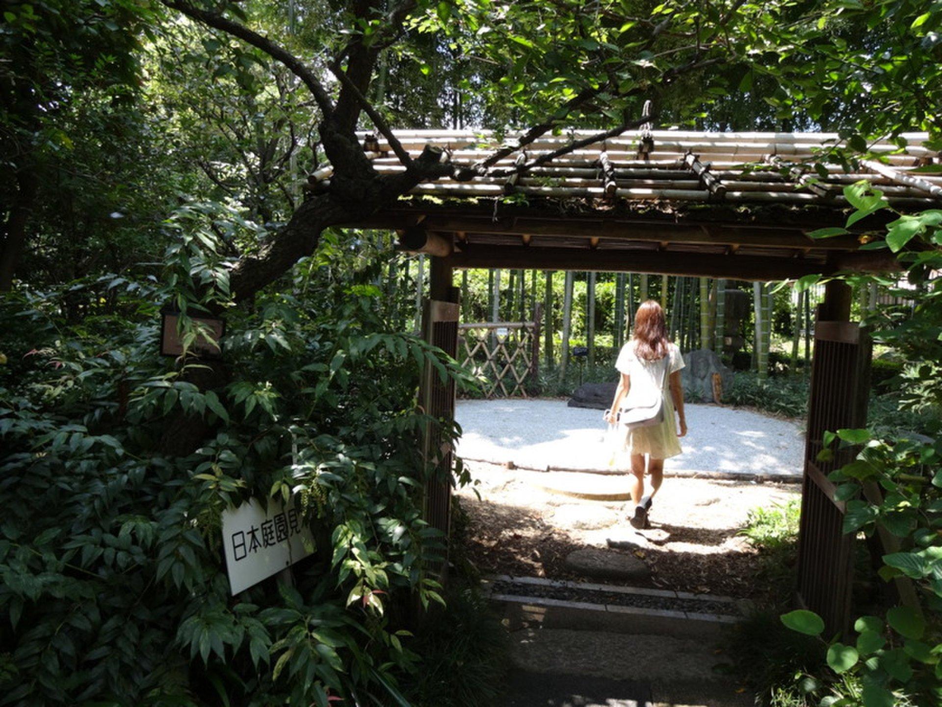 【ウルサイ所キライです】力を抜いて遊べる板橋特集。板橋って意外と遊べるぞ!