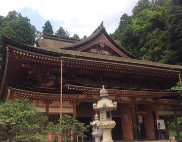 【滋賀・観光】無人島なのに、神社が多い!?滋賀・琵琶湖に浮かぶ島「竹生島」のパワースポット!