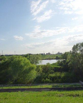 江戸川河川敷緑地