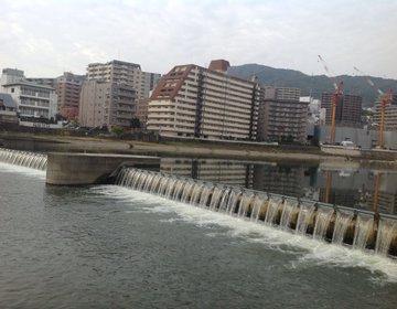 【宝塚に行ったら】駅から徒歩5分!!武庫川河川敷を散策し、観光ダムを見に行こう!