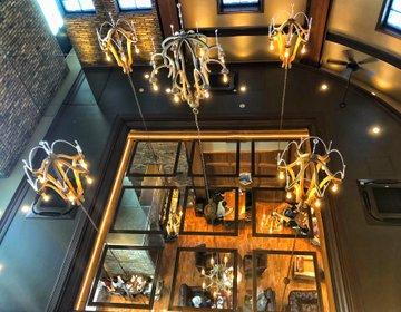 ラグジュアリーカフェランチ♡『ドトール珈琲農園』異空間おすすめカフェ行ってみた!