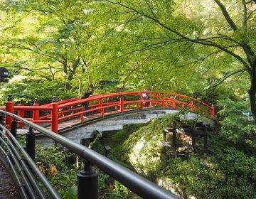 今年の紅葉はどこに行く?関東人気スポット!伊香保温泉「河鹿橋」へ行ってみた♪ライトアップも!