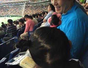 【野球通が教えます!】子供と楽しむ野球観戦〜東京ドーム編〜球場グルメ・キッズスペース・注意点
