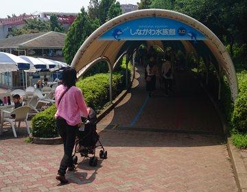 大井町駅から無料送迎バスでしながわ水族館。帰りは、子どももバクつく裏通りの和食薬膳「魔法の粉」